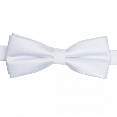 Fashion 4 Men - Ardan Stripe Bowtie