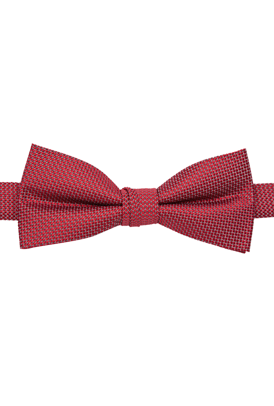 Fashion 4 Men - Textured Bowtie